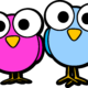 twi-birds